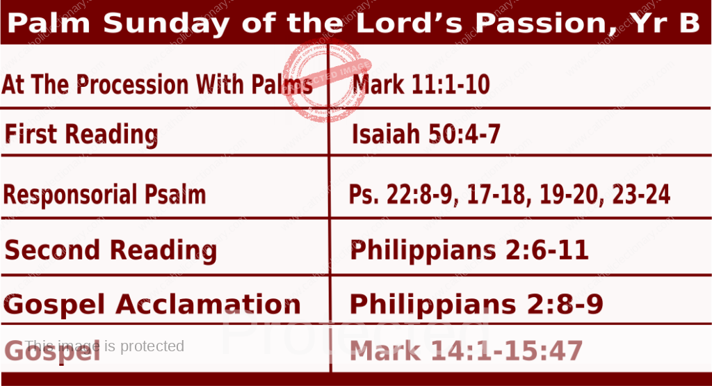 Mass Readings for Palm Sunday 2021 - March 28 2021 - Palm Sunday of the Lord's Passion.