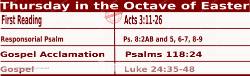 Catholic Daily Mass Readings for April 8 2021, Thursday in the Octave of Easter.