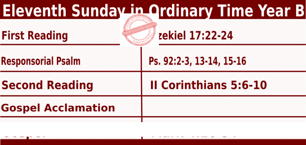Catholic Sunday Mass Readings for June 13 2021, Eleventh Sunday in Ordinary Time Year B