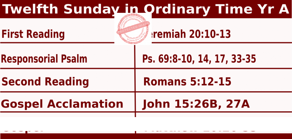 Catholic Daily Mass Readings for June 21 2020, Twelfth Sunday in Ordinary Time