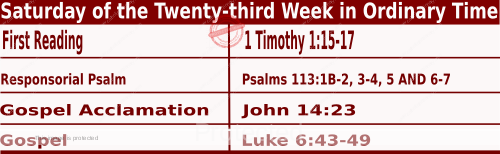 Bible quotations in Mass Readings for September 11 2021, Saturday of the Twenty-third Week in Ordinary Time - Catholic Readings for today September 11 2021