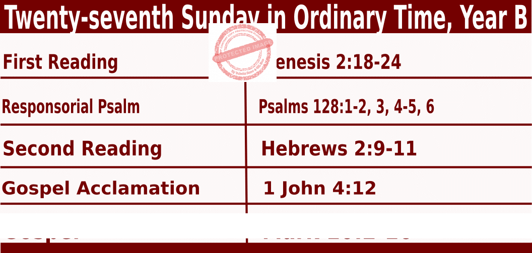 Bible quotations in Sunday Mass Readings for October 3 2021